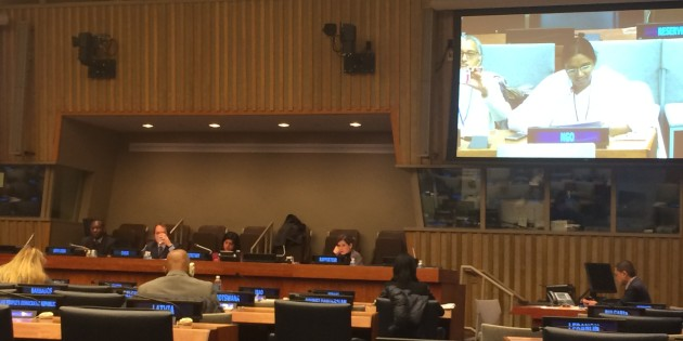 Brahma Kumaris at the 55th Session of CSocD
