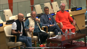 Panel at IDY UNHQ