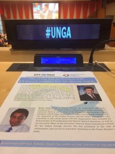 UNGA with NGOs